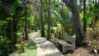 Welcome Spring with Botanical Fest