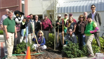 Campus Greening Effort Takes Root