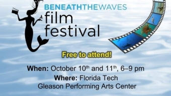 Look Beneath the Waves at Film Festival