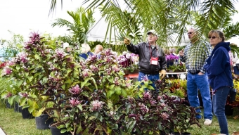 Botanical Fest Ready to Bloom March 7