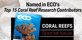 Postdoc Named Coral Reef Hero